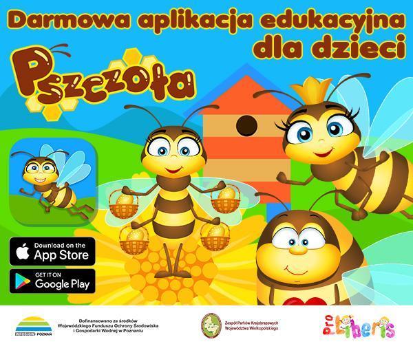 pszczoła gra dla dzieci